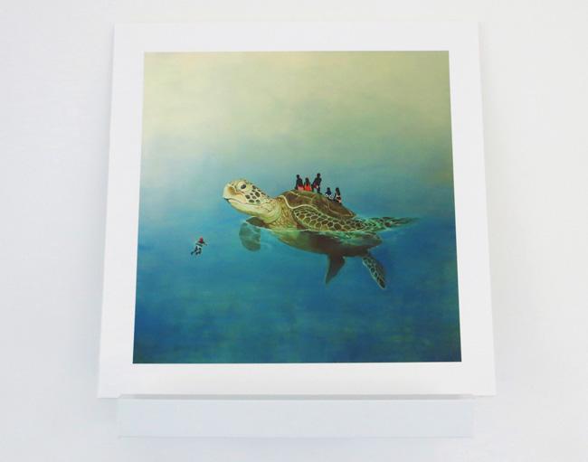 turtleonshelf